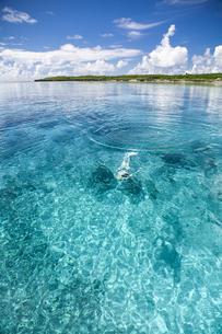 沖縄の透明な海の写真素材 [FYI01235947]