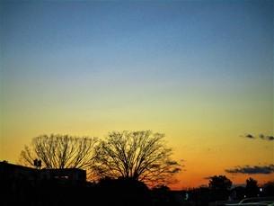 夕方と夜の間の写真素材 [FYI01236026]