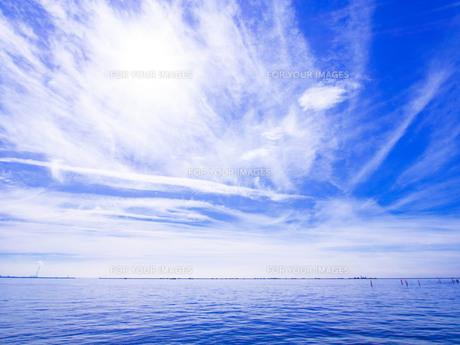 青色と白色の写真素材 [FYI01236200]