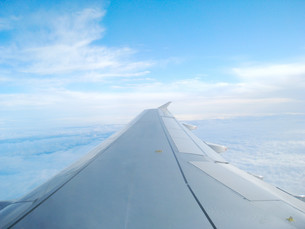 飛行機から見た風景の写真素材 [FYI01236400]