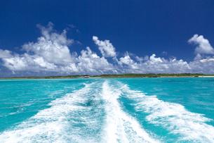 南の島のサンゴ礁の写真素材 [FYI01236414]