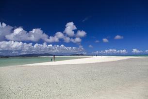 南の島の楽園ビーチの写真素材 [FYI01236420]