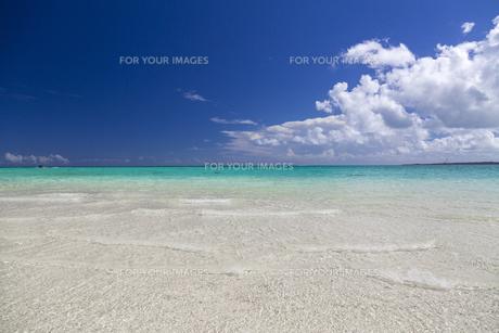 南国のビーチの写真素材 [FYI01236427]