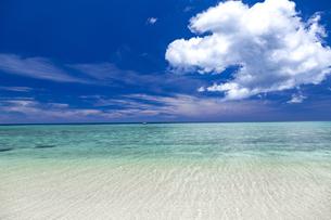南の島の隠れビーチの写真素材 [FYI01236451]