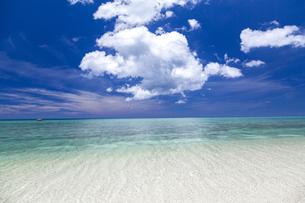 南の島の隠れビーチの写真素材 [FYI01236452]