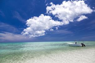 南の島の隠れビーチの写真素材 [FYI01236453]