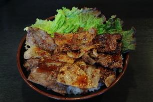 牛丼の写真素材 [FYI01236670]
