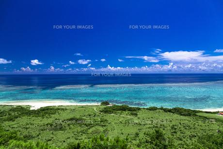サンゴ礁の海を見下ろすの写真素材 [FYI01236673]