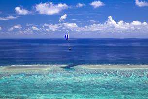 サンゴ礁の海を見下ろすの写真素材 [FYI01236674]
