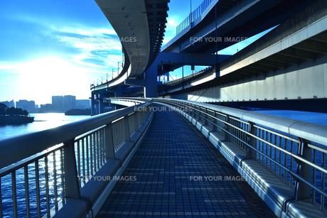 レインボーブリッジの遊歩道の写真素材 [FYI01236769]