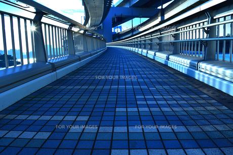 レインボーブリッジの遊歩道の写真素材 [FYI01236770]