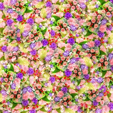 花の写真素材 [FYI01236827]