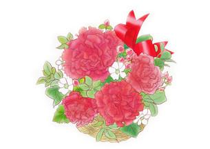 カーネーションの花束のイラスト素材 [FYI01237037]