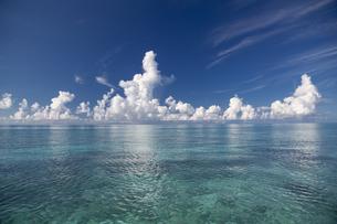 南の島のサンゴ礁の海の写真素材 [FYI01237148]