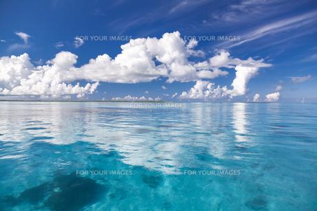 南の島のサンゴ礁の海の写真素材 [FYI01237153]