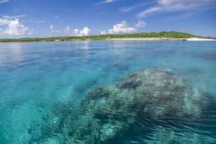 南の島のサンゴ礁の海の写真素材 [FYI01237162]