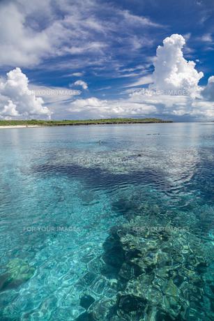 南の島のサンゴ礁の海の写真素材 [FYI01237169]