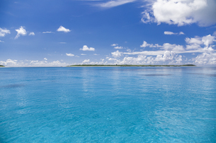 南の島のサンゴ礁の海の写真素材 [FYI01237179]