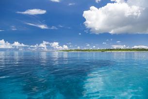 南の島のサンゴ礁の海の写真素材 [FYI01237181]