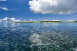 南の島のサンゴ礁の海の写真素材 [FYI01237182]