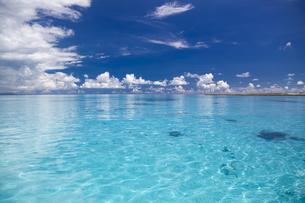 南の島のサンゴ礁の海の写真素材 [FYI01237184]