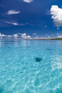 南の島のサンゴ礁の海の写真素材 [FYI01237185]