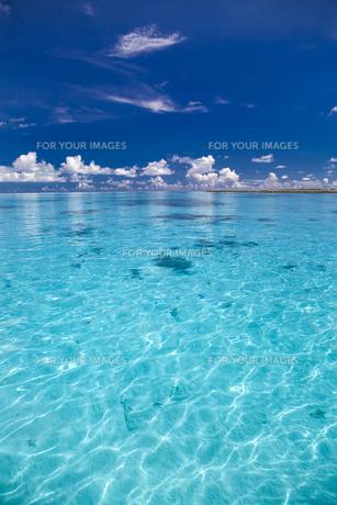 南の島のサンゴ礁の海の写真素材 [FYI01237186]