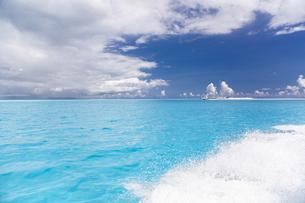 南の島のサンゴ礁の写真素材 [FYI01237187]