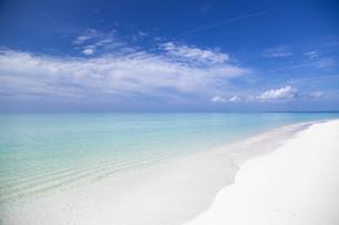 南国の楽園ビーチの写真素材 [FYI01237198]