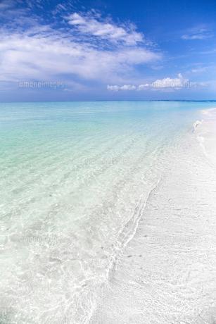 南国の楽園ビーチの写真素材 [FYI01237200]