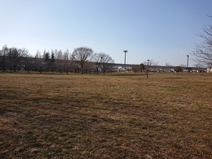 芝生、広場の写真素材 [FYI01237306]