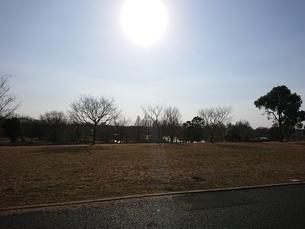太陽の写真素材 [FYI01237308]