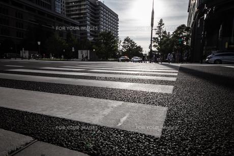 横断歩道の写真素材 [FYI01237334]