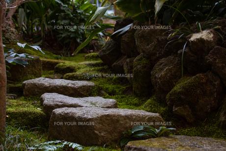 石畳の写真素材 [FYI01237395]