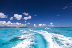 サンゴ礁の海と船の軌跡の写真素材 [FYI01237928]