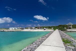 小浜島 南の島の静かな漁港の写真素材 [FYI01237939]