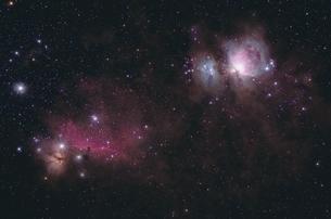 オリオン座中心部の写真素材 [FYI01238057]