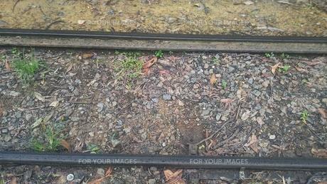山岳鉄道 専用レール Kuranda Scenic Railway キュランダ観光鉄道 オーストラリア ケアンズの写真素材 [FYI01238264]