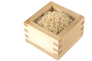 玄米の写真素材 [FYI01238468]