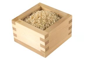 玄米の写真素材 [FYI01238469]