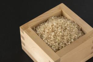 玄米の写真素材 [FYI01238471]