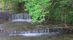 川とのたわむれ初夏の訪れの写真素材 [FYI01238630]