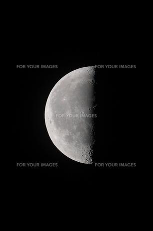 下弦の月の写真素材 [FYI01238958]