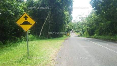 オーストラリア クイーンズランド州 キュランダ 道路標識 Australia Kuranda Cairnsの写真素材 [FYI01238991]