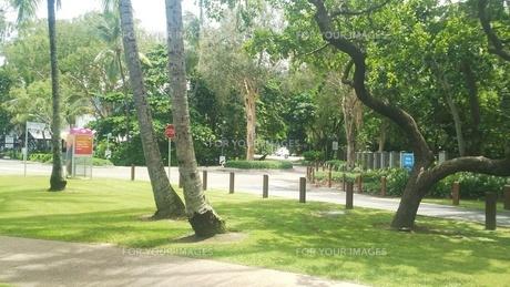 オーストラリア クイーンズランド州 パームコーヴ 街並み 2 Palm Cove Australia Cairnsの写真素材 [FYI01239017]