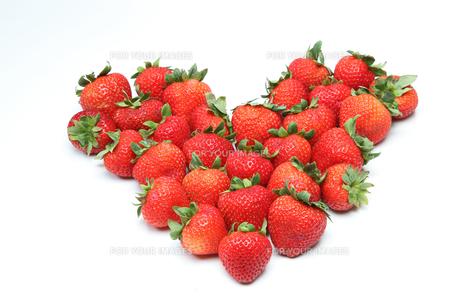 イチゴの写真素材 [FYI01239198]