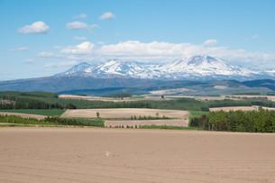 残雪の山並みと畑作地帯 大雪山の写真素材 [FYI01239312]