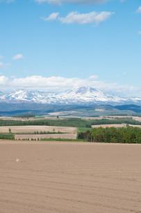 残雪の山並みと畑作地帯 大雪山の写真素材 [FYI01239313]
