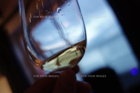 ウイスキーのテイスティングの写真素材 [FYI01239493]