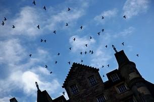 グラスゴー 建物と鳥の群れの写真素材 [FYI01239508]